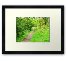 Steep Step Down Framed Print