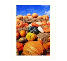 Colorful pumpkins  Art Print