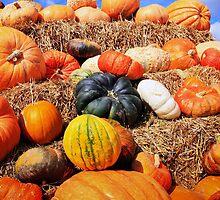 Colorful pumpkins  by torishaa