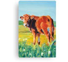 The Calf Canvas Print