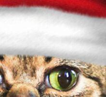 Christmas Bub Sticker