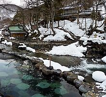 Takaragawa Onsen Hot Springs by errno