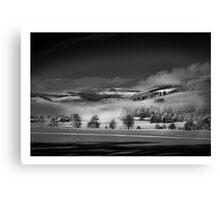 MistyFlip Canvas Print