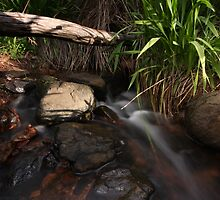 My local creek by Bradles