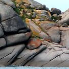 Rockscape at Victor Harbour by SuziTC
