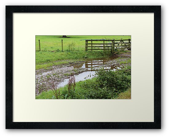 The Vicar Puddle by Gingersnaps1984