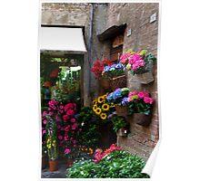 Spring in Siena Poster