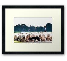 The herders Framed Print