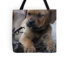Little Miss Cutie Tote Bag