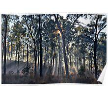 Through smoke and trees Poster