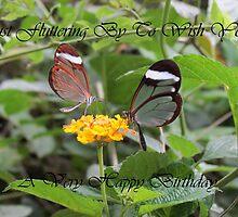 Fluttering By by jem36