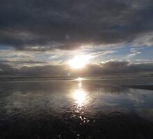 Murawai Beach by chrissy mitchell