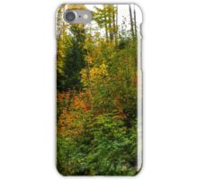 Oregon Fall Colors iPhone Case/Skin