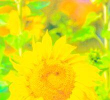 Rigby Idaho  Sunflower Feelings Sticker