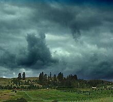 Summer Storm at Enderby by Jann Ashworth