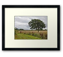 Cheshire Countryside, Framed Print