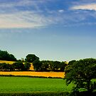 Staffordshire Shropshire Border by Aggpup