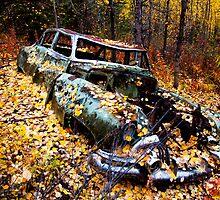 Car in Woods by mikewheels