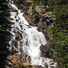 Hidden Falls in the Grand Teton Mountain Range by Kenneth Keifer