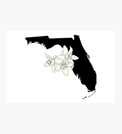 Florida Silhouette and Flowers Photographic Print
