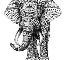Tumblr Inspired Elephant by rileyr21