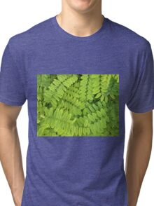Bright green leaves and small acacia with dew drops Tri-blend T-Shirt