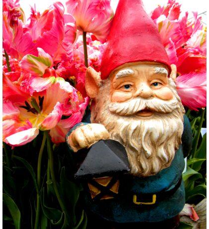Tulip of Pink Gnome I Sticker