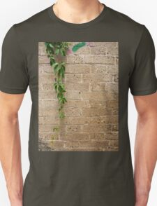 Detail of a wall of gray stone interspersed with shells T-Shirt