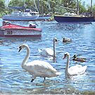 swans and boats at Christchurch harbour,UK by martyee