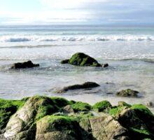 Moss on Beach Rocks Sticker