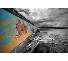 Land & Sea Mural Photographic Print