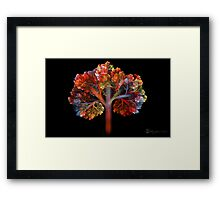 Fall Is Coming!! Framed Print