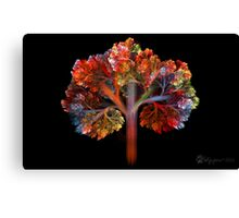Fall Is Coming!! Canvas Print