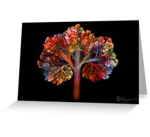 Fall Is Coming!! Greeting Card