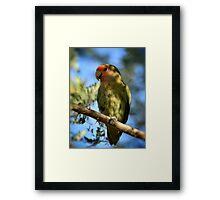 Pretty Bird Framed Print