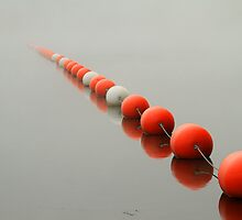 A Line to the Unknown by Karol Livote