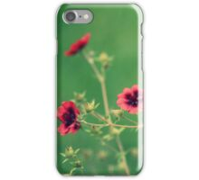 """ She Walks In Beauty ""  iPhone Case/Skin"