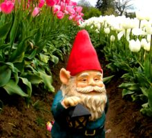 Tulip Path Gnome Sticker
