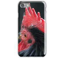 Black Hen iPhone Case/Skin