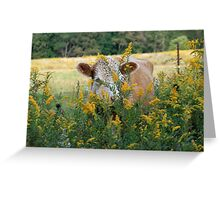 The Golden Cow In The Golden Pasture Greeting Card