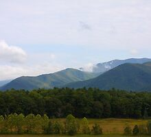 The Valley - Cades Cove Tennessee by Tony Wilder