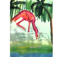 Flamingo #3 , watercolor Photographic Print