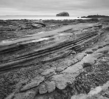 The Greta Car and the Bass Rock by Christopher Cullen