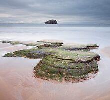 Seacliff Beach by Christopher Cullen