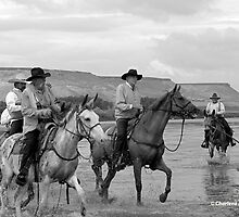 COWBOYS OF THE OREGON TRAIL by Charlene Aycock