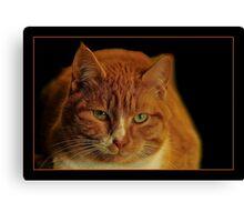 LOVE MY CAT Canvas Print
