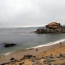 Monterey Bay by DBArt