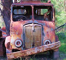 Meet Rusty, the old Thornycroft Trusty by Michael John