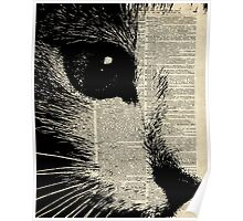 Cute Cat,Lovely Kitten Stencil Over Old Book Page Poster