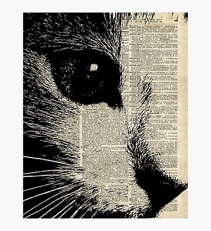 Cute Cat,Lovely Kitten Stencil Over Old Book Page Photographic Print